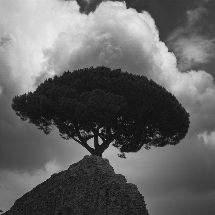14_Roma
