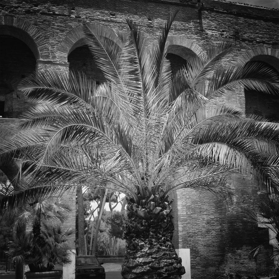 23_Roma
