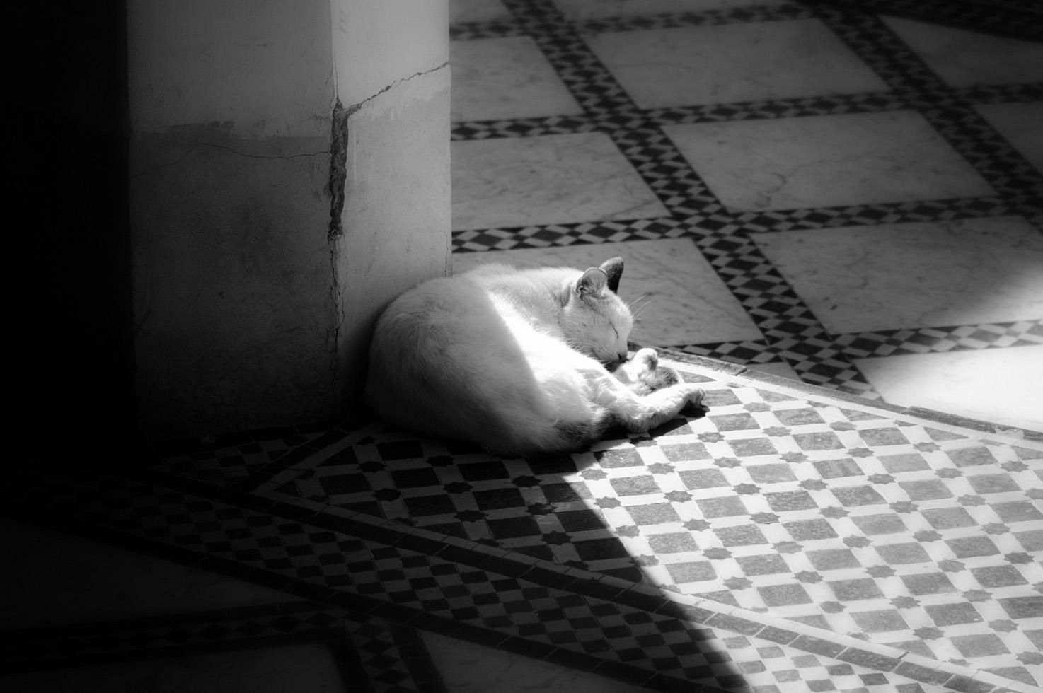Maroc_24