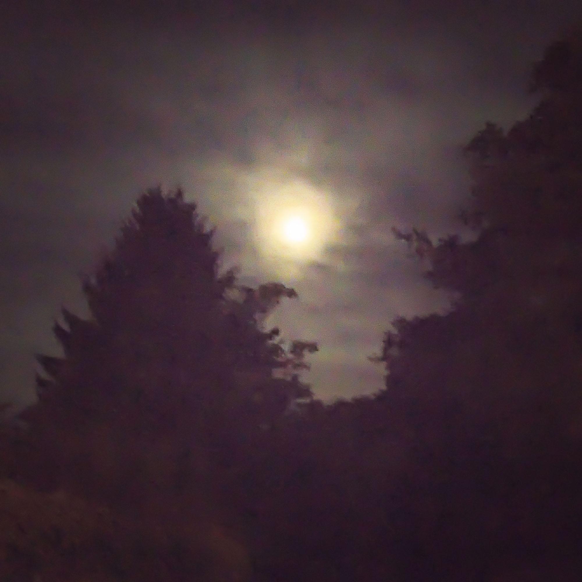 Nightfall_05