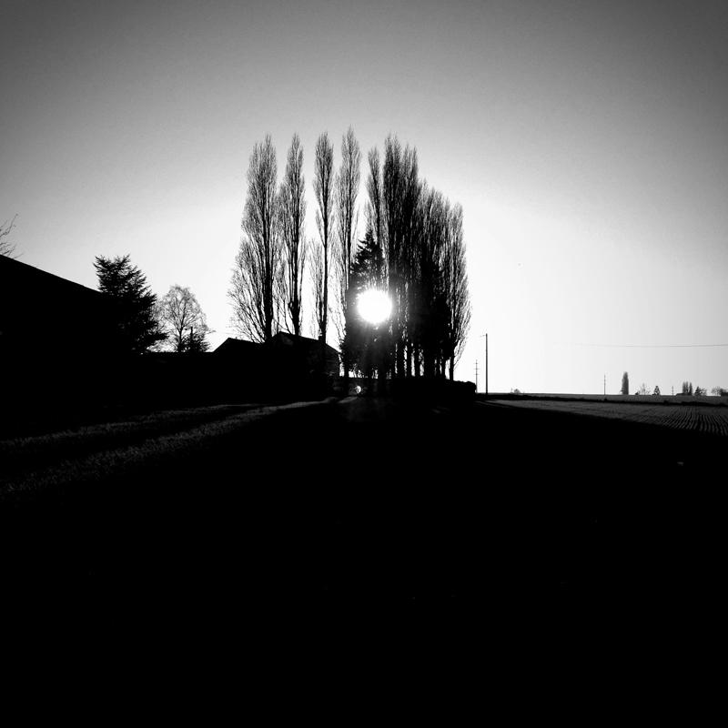 Olivier_Desrousseaux_15